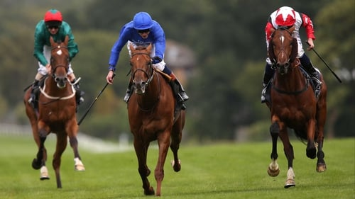 Aktabantay (left) could run next in the Group One Dewhurst Stakes