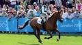Ireland eventing team qualify for Rio 2016