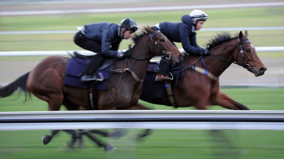 A trackwork session at Moonee Valley Racecourse in Melbourne