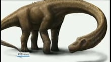 Discovery of 60 tonne dinosaur in Argentina