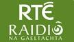 Bladhaire, Dé hAoine 30/10/2020. An t-Oireachtas sa bhaile.