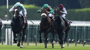 Treve (r) was unplaced at Arc trials in Paris two weeks ago
