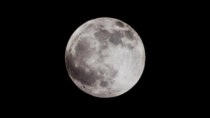 The tourists are set to visit the Moon late next year