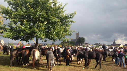 Organisers of the horse fair say crowds compare well to previous years