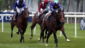 Ivawood is a top-price 8-1 favourite for next season's 2000 Guineas despite never having run over more than six furlongs