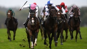 Al Kazeem finished second in the Champion Stakes at Ascot behind  Tattersalls Gold Cup winner Noble Mission on his final start last season