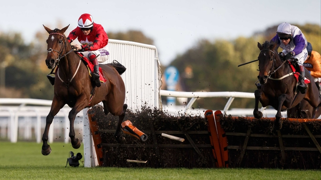 The New One to miss Christmas Hurdle
