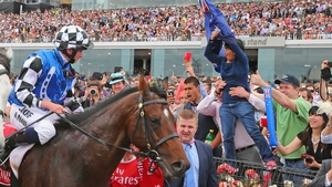 Protectionist failed to win in eight starts in 2015