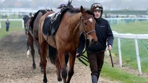 Shaneshill looks set to challenge for the Navan Novice Hurdle