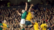 Australia beat Ireland last year at Lansdowne Road