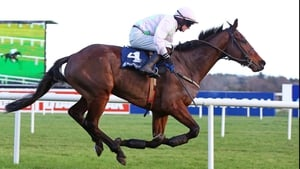 Djakadam, who makes his seasonal reappearance in the Hennessey, fell when still travelling well in the JLT Novices' Chase at last season's Cheltenham Festival