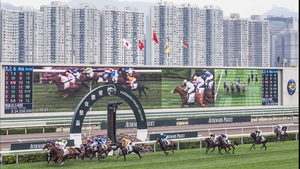 Spectacular Sha Tin Racecourse is nestled between soaring skyscrapers on land reclaimed from the sea