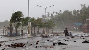 The powerful typhoon tore down trees and power lines