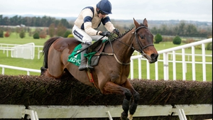 Felix Yonger could line up in the Champion Chase at Punchestown after justifying favouritism in the Webster Cup Chase
