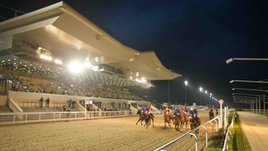 Racing at Dundalk takes place on a wax-coated sand, recycled rubber and synthetic fibre surface which is less intensive than turf