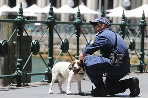 A police officer and dog in the CBD in Sydney