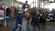 Barry Geraghty on board Bobs Worth is led into the parade ring after winning The Lexus Steeplechase last year