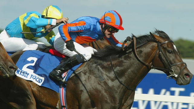 Derby hero High Chaparral put down