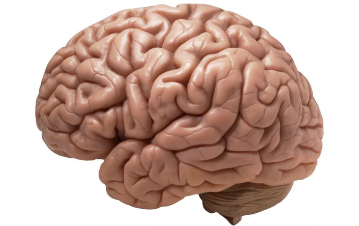 Popular Myths about the Brain / Mind
