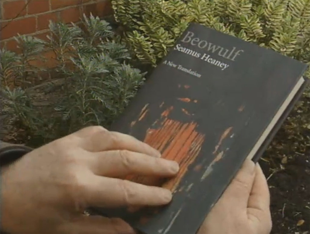 Beowulf Book by Seamus Heaney