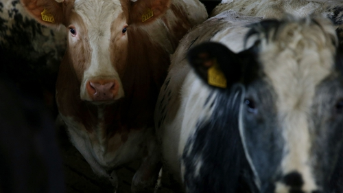 It is thought 70,000 farmers could be entitled to payments under the scheme