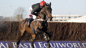 Sprinter Sacre is 'nearly there' according to Nicky Henderson