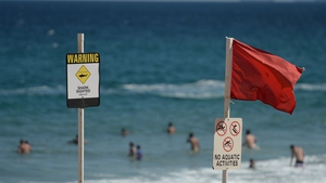 Spate of shark attacks have left one surfer dead and two injured