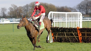 The New One is geared up for the Stan James Champion Hurdle