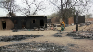 A village is left devastated after a Boko Haram attack earlier this year