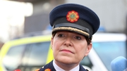 Garda Commissioner Noirín O'Sullivan made a commitment over access to Leinster House
