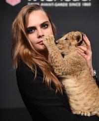 Cara Delevingne models with lion cub