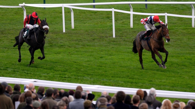 No prep run for Winner ahead of Gold Cup