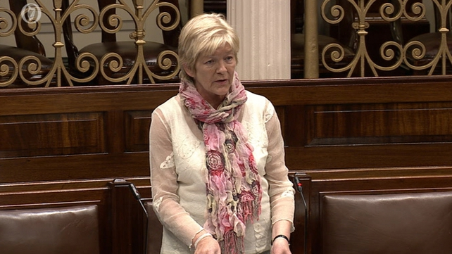 Anne Ferris criticised the lack of objectivity in the Govt's selection of the 14 individual institutions