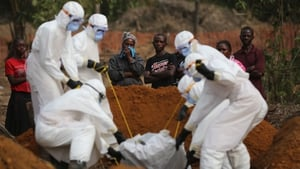 11,300 people died in the Ebola epidemic in West Africa in 2014-2015