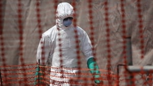 The experimental vaccines now moving into large clinical trials in West Africa target the current Ebola Zaire virus strain