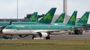 Willie Walsh described IAG's airlines as different to each other said that is why IAG wants to acquire Aer Lingus