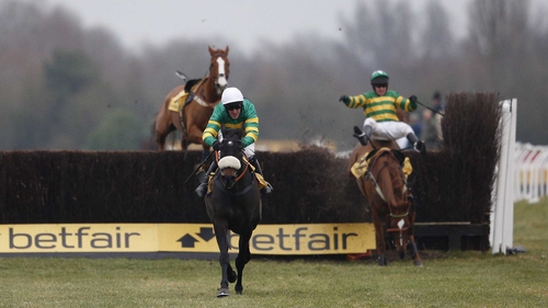Mr Mole will be aimed at the Queen Mother Champion Chase at the Cheltenham Festival
