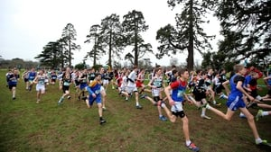 The Minor Boys 2,000m race during the Leinster Schools Cross Country Championships in Santry, Dublin