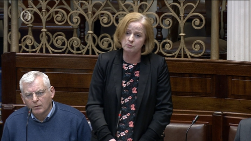 """Ruth Coppinger said her use of the word 'dogs' did not refer to gardaí but was a """"figure of speech"""""""