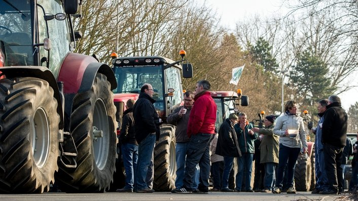 EU meeting to discuss livestock and dairy crisis