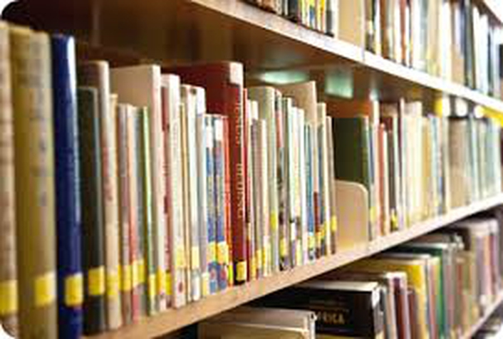 Essay: library rules