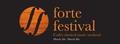 Forte Festival, Cork