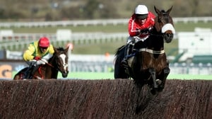 Barry Geraghty partnered The Druids Nephew to victory at the recent Cheltenham Festival