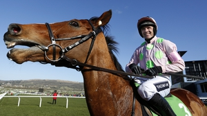 Faugheen under Ruby Walsh