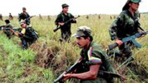 Talks with the FARC, aimed at ending a five-decade-long war began in late 2012