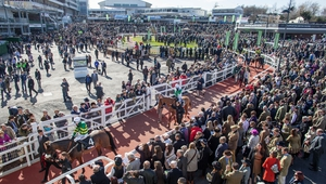 Must racegoers will welcome Cheltenham's decision to increase the time between races at the Festival