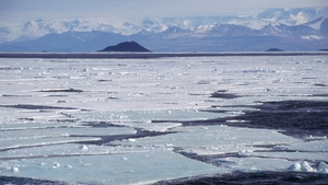 Between January and August, temperatures reached between 2C and 3C in Antarctic