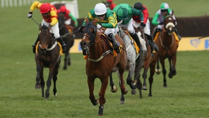 16-1 shot Uxizandre won the Ryanair Chase by a good distance
