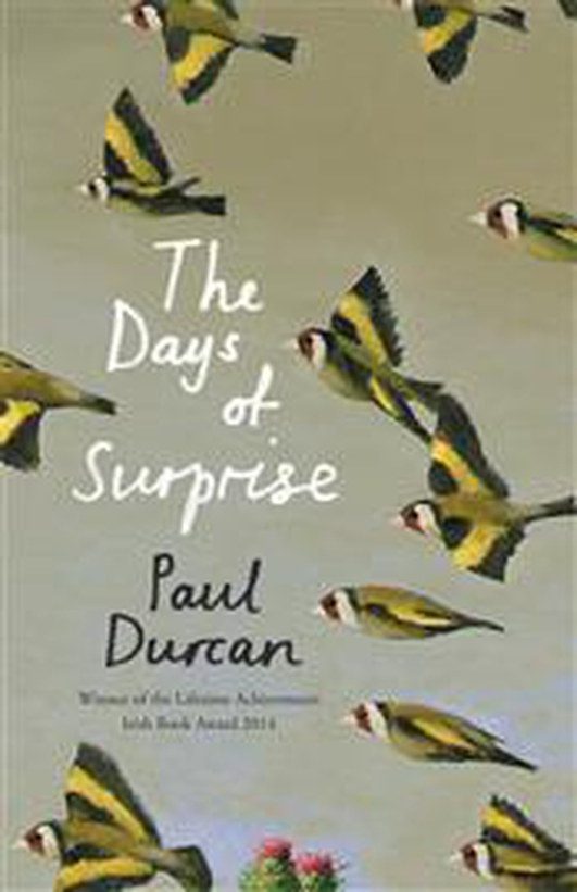 "Book review: ""The Days Of Surprise"" by Paul Durcan"
