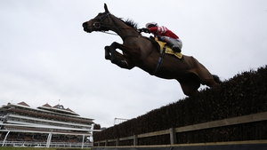 Coneygree became the first novice to win the Gold Cup in 41 years when he struck at last season's Cheltenham Festival